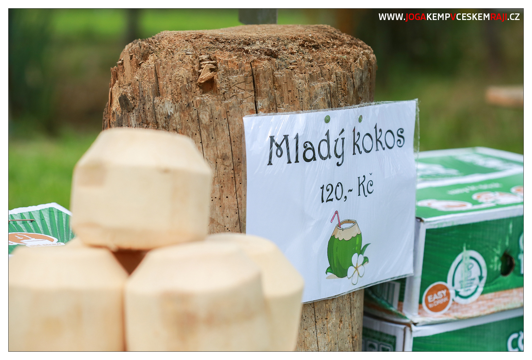 JOGA KEMP V ČESKÉM RÁJI - www.jogakempvceskemraji.cz